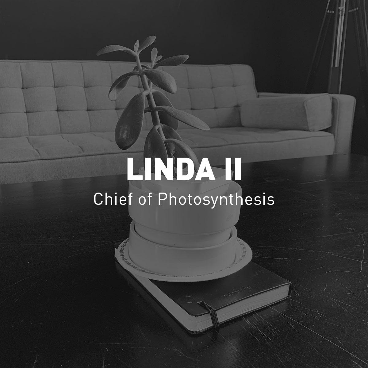 SSC-Linda-title-1